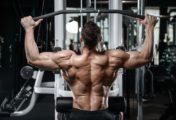 Les meilleurs exercices de musculation pour le dos
