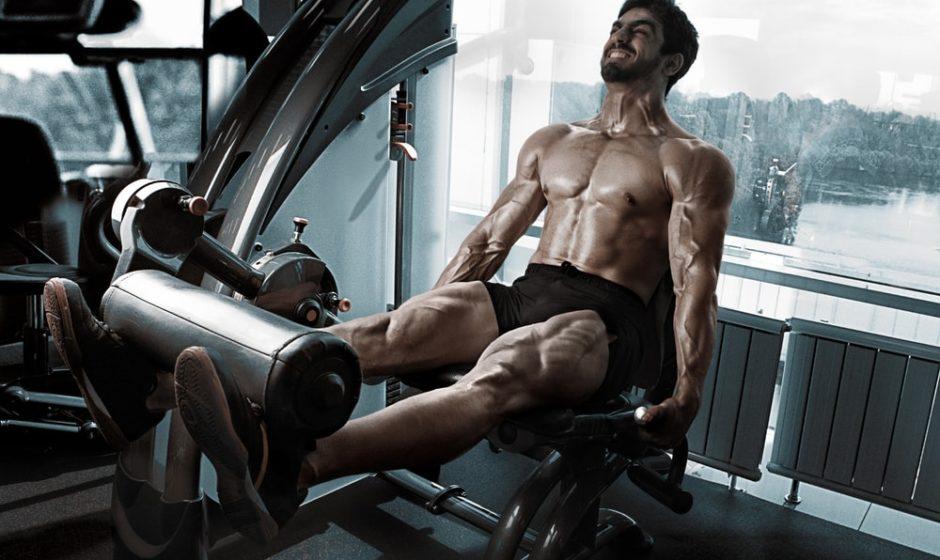 Les meilleurs exercices pour avoir des jambes puissantes et musclées