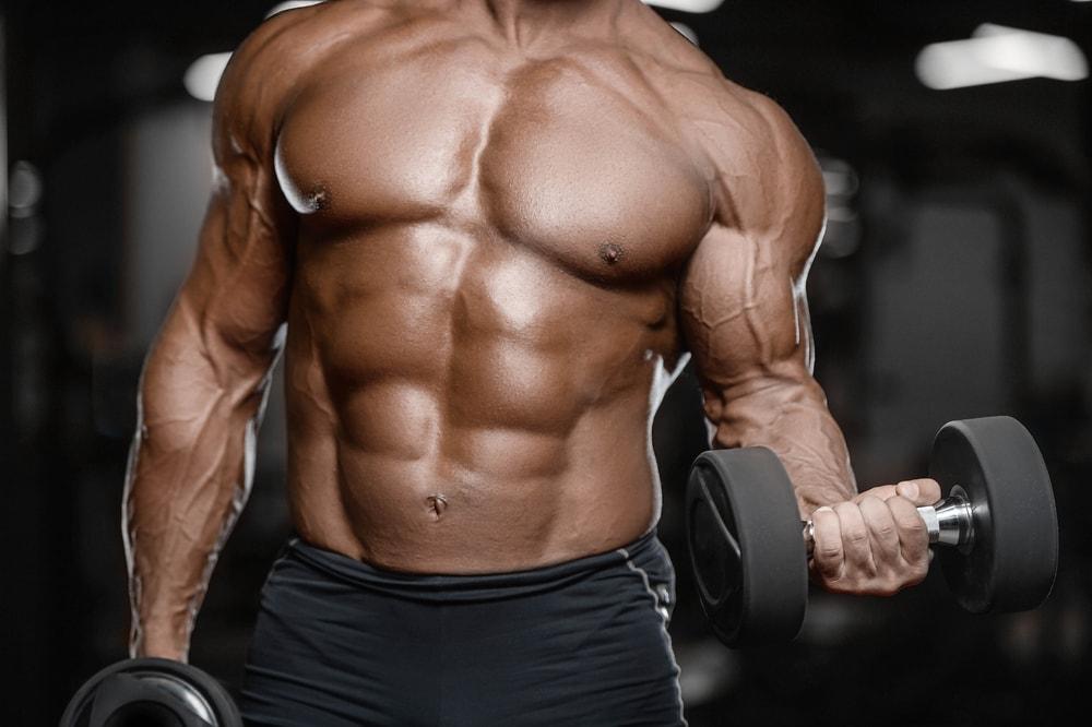 10 Creative Ways You Can Improve Your diététique de la musculation