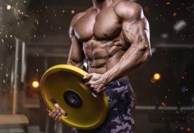 Quelle protéine choisir si vous faites de la musculation ?