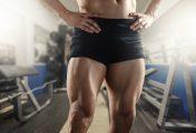Les meilleurs exercices pour muscler les cuisses et les fessiers