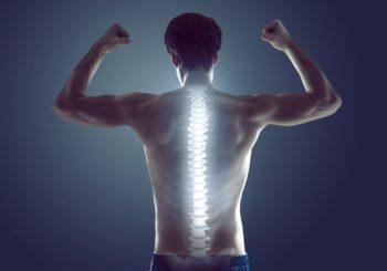 Combattre le mal de dos avec la musculation