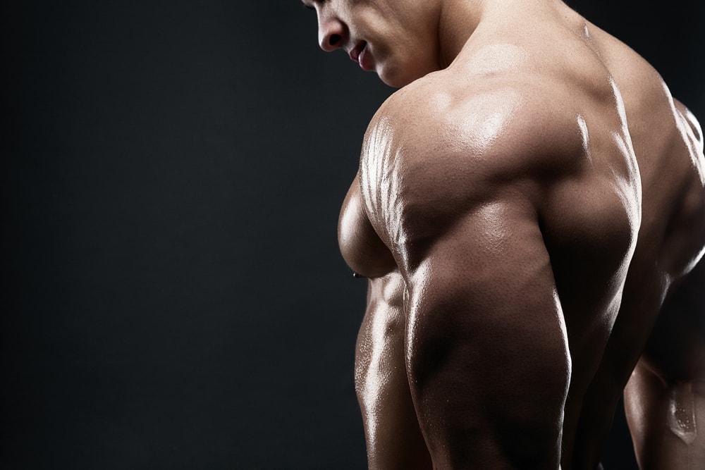 éviter de perdre de la masse musculaire