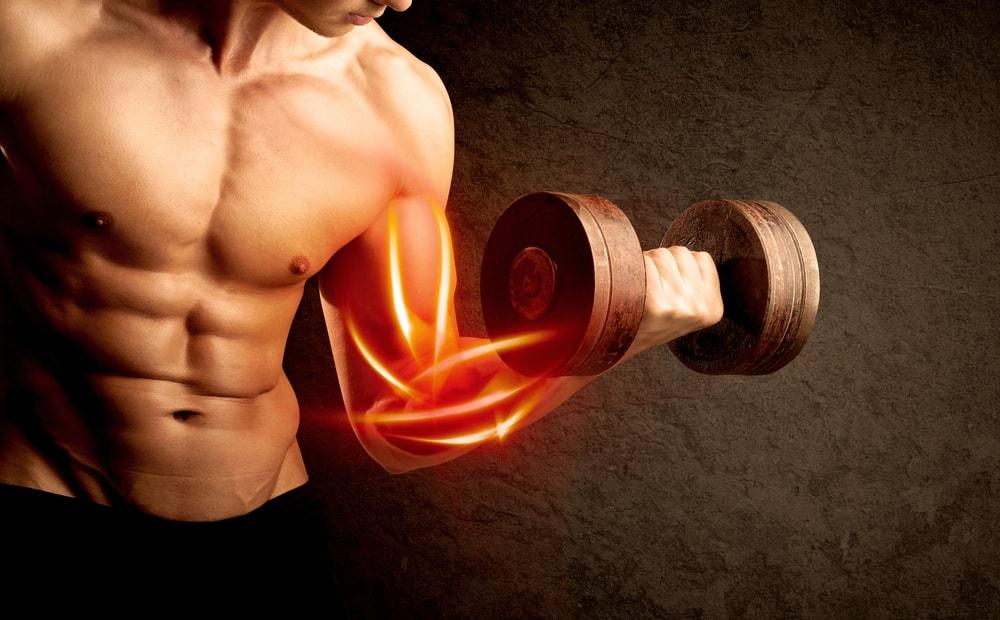 l'alimentation pour prendre du muscle naturellement