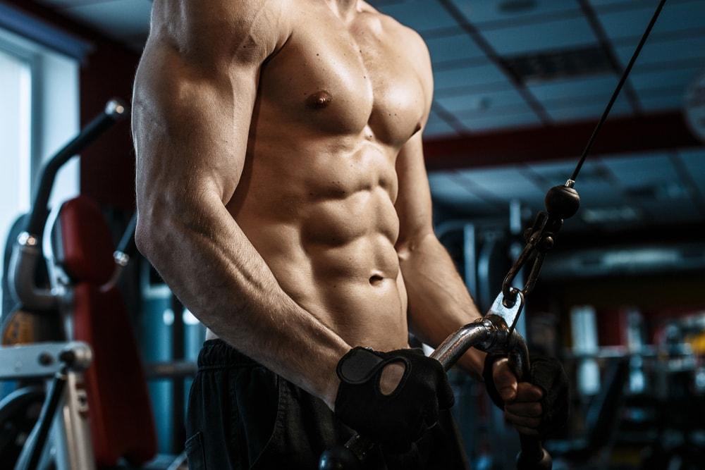 musculation pour débutant