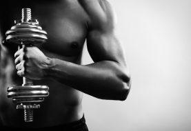 Programme de musculation pour débutants